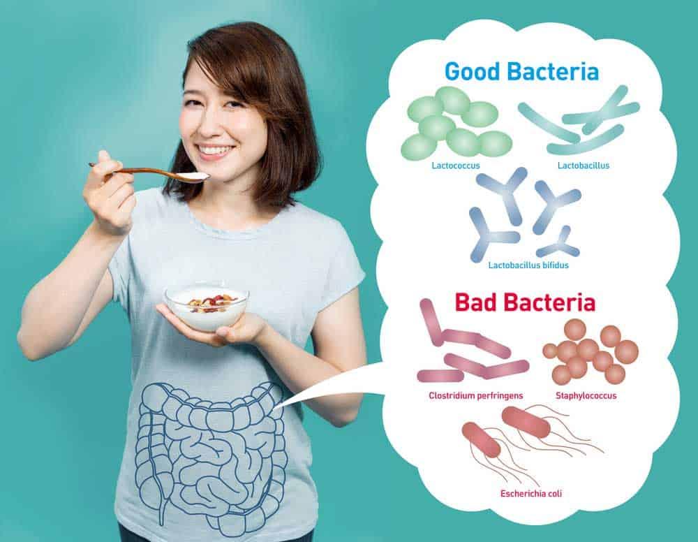 best SIBO treatment - antibiotic for SIBO - SIBO probiotics